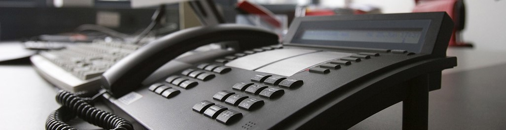 Hosted Telephony Services222
